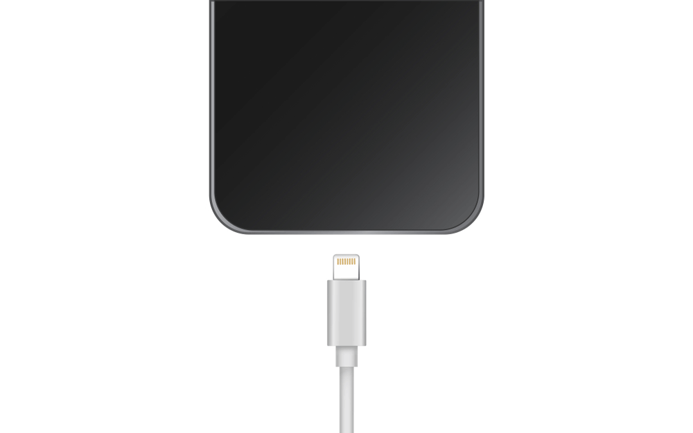 port charger iphone (1)